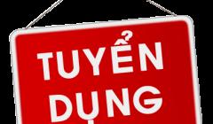 Tuyển dụng kế toán- lương 5 triệu – Đà Nẵng